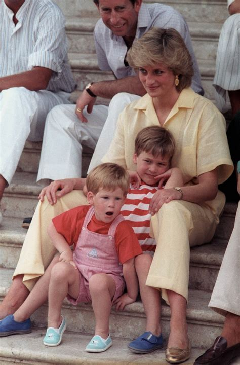 Prince William wishes Princess Diana could have met her