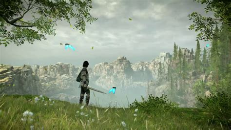 SHADOW OF THE COLOSSUS PS4 Remake / How to Equip Pre-Order