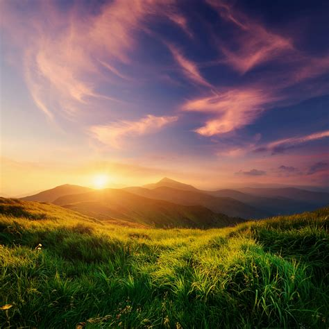 A View From The Top Nature QHD Wallpaper - Wallpaper