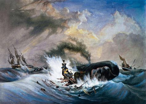 This Real-Life Whaling Disaster Inspired 'Moby-Dick'