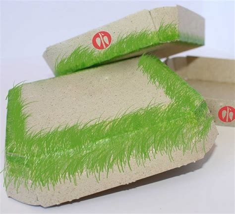 Sun Dried Grass Paper wins Best Sustainable Packaging