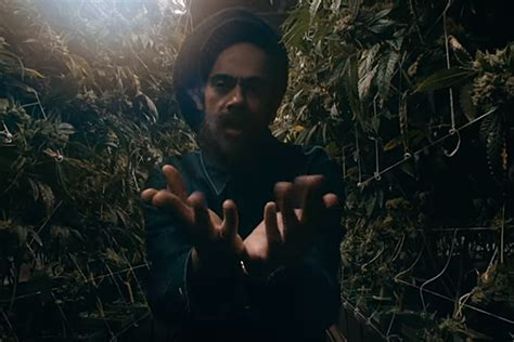 Damian Marley and Stephen Marley Turn a Prison into a Weed