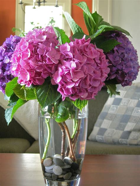 My Little Bungalow: Pink and Purple Hydrangea