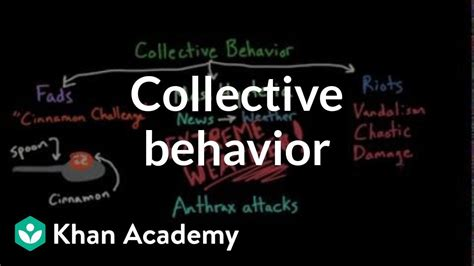 Aspects of Collective Behavior: Fads, Mass Hysteria, and
